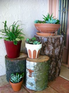 Re-purpose tree stumps into plant display. Re-purpose tree stumps into plant display. Outdoor Pots, Outdoor Gardens, Outdoor Crafts, Indoor Gardening, Outdoor Ideas, Container Gardening, Diy Planters, Planter Pots, Recycled Garden Art