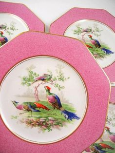 "Set 8 Wedgwood & Co Tunstall England 8"" Plates Asiatic Birds Pheasants Pink #WedgwoodCo"