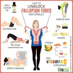 How To Unblock Fallopian Tubes Many people store fat in the belly, and losing fat from this area can be hard. Here are How To Unblock Fallopian Tubes tips to lose belly fat, based on studies. Fertility Yoga, Fertility Foods, Natural Fertility, Fertility Massage Self, Fertility Boosters, Fertility Smoothie, Natural Healing, Pre Pregnancy, Pregnancy Health