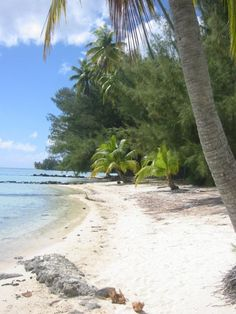 Moorea, Tahiti...