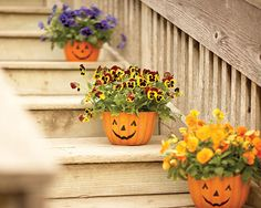 """Try these """"pumsies"""" for your porch--pansies in pumpkin planters. These clay pots can welcome guests from Halloween through the harvest season. Later, you can transfer the pansies to other planters or tuck them into the garden."""