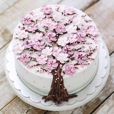 Cherry blossom cake, YAY or NAY?! How gorgeous is this? and who else is seeing cherry blossoms and falling petals everywhere? my new…