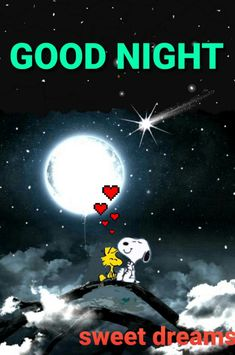 Snoopy Happy Dance, Snoopy Love, Charlie Brown And Snoopy, Snoopy And Woodstock, Good Night Greetings, Good Night Messages, Good Night Wishes, Good Night Sweet Dreams, Good Night Prayer
