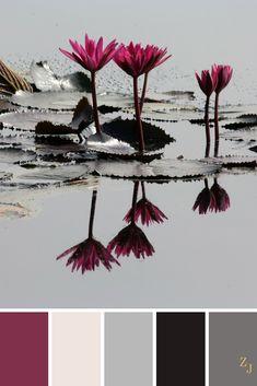 ZJ Colour Palette 314 #colourpalette #colourinspiration