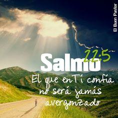 Salmo 22:5 Clamaron a ti, y fueron librados; Confiaron en ti, y no fueron avergonzados.♔