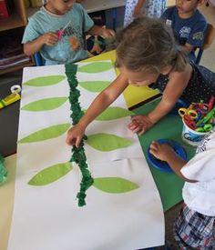 Ecole maternelle Peyret Forcade - Un haricot géant !