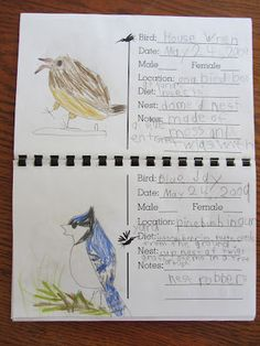 Great Birds I know/seen book idea  and lots of other homeschool ideas