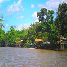 ilha do Combú, beleza nativa e próximo do centro de Belém. Encanta turistas com visão privilegiada da Metrópole da Amazônia.