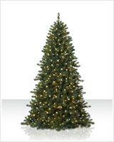 Pre Lit Fraser Fir Artificial Christmas Tree | Christmas Tree Market