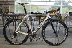 custom pinarello dogma - Google Search Road Bikes, Cycling Bikes, Bicycle Race, Motorized Bicycle, Classic Road Bike, Push Bikes, Speed Bike, Bike Reviews, Mtb