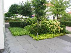 twee tuinen twee_ontwerpen 2 | Nalbach Tuinontwerp Groendadvies
