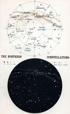 Tattoo inspiration--constellations.