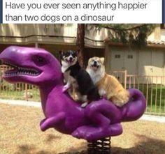 2 dogs on a dinosaur