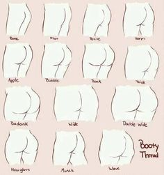Booty tutorial - how to draw a fine ass - human anatomy - drawing reference Drawing Lessons, Drawing Techniques, Drawing Tips, Inkscape Tutorials, Art Tutorials, Anatomy Drawing, Human Anatomy, Anatomy Reference, Drawing Reference