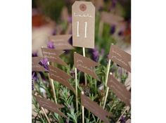 #mariage #champetre #campagne #idee #deco #fleurs