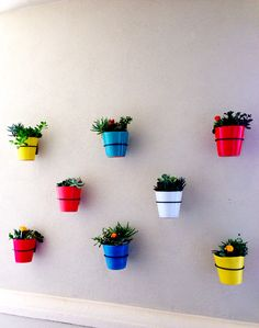 Colorful wall pots