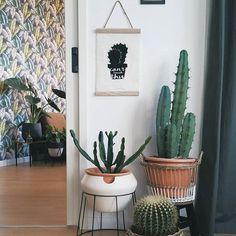 De IKEA PS 2017 sierpot bij @mandybollegraf | #IKEABijMijThuis IKEA IKEAnl IKEAnederland inspiratie wooninspiratie woonkamer interieur kamer planten cactus bohemian retro look