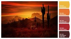 The Essence of the Southwest - Saija Lehtonen | Paint colors from Chip It! by Sherwin-Williams