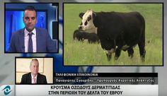 Οι αποφάσεις και τα μέτρα του Υπουργείου Αγροτικής Ανάπτυξης για το κρούσμα οζώδους δερματίτιδας στον Έβρο