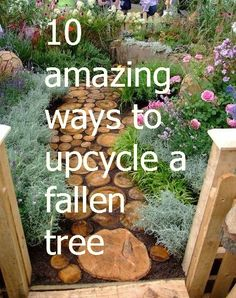 10 ways to upcycle a fallen tree -- good to know especially after that terrible storm.