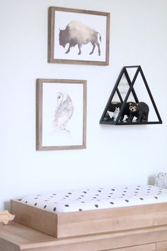 Above changing table decor. How to decorate above a changing table. Ideas for above changing table. Modern Black and White Nursery Threshold Buffalo and owl watercolor prints. Owl Nursery, Nursery Decor, Nursery Ideas, Black White Nursery, Adventure Nursery, Nursery Neutral, Baby Boy Nurseries, Girl Room, Kids Rugs