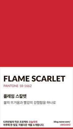 Color of today: Flame Scarlet디자인빛의 작은 프로젝트 오늘의색은 하루에 한 빛깔, 아름다운 색과 재...