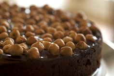 what to do with hazelnut flour. not this, but it's looking awfully tempting regardless.