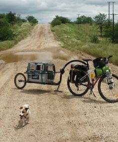 Barking mad: two dogs and a bike on the Dragon's Spine | Cycle Traveller: http://cycletraveller.com.au/australia/features/barking-mad-cycling-dragons-spine-with-two-dogs #cycletouring #bicycletouring #travel
