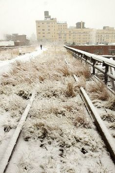 high line park in snow, New York New York Central Railroad, Home Nyc, Voyage New York, Washington Square Park, High Line, Public Garden, Parcs, Urban Landscape, Best Cities