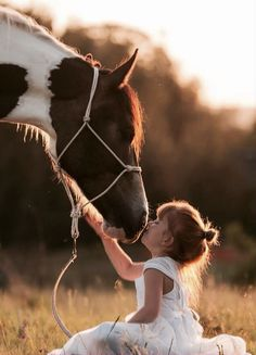 Precious capture of a horse kiss. Makes my heart smile!