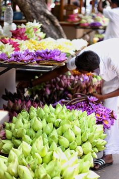 Flower stands in Kandy