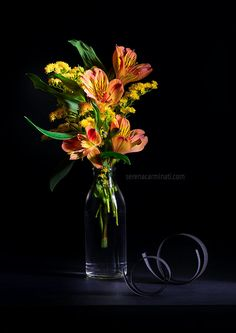 Alstroemeria with solidago flower. Low-key still life photography by Serena Carminati. See more works on foodfulife.com.