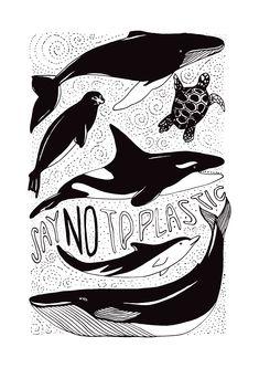 Ocean animals awareness poster and t-shirt design.