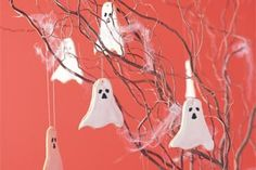 Ghostly biscuits main image