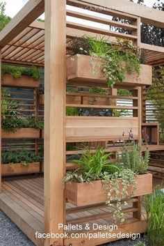 Planters and a pergola-covered patio all in one. Lots of options for planting with #strawberries and #grapes or #kiwifruit vines