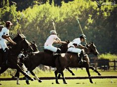 France Open of Polo, Chantilly, France