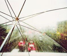 Umbrella under the rain Under The Rain, Under My Umbrella, Dandelion, Japan, My Love, Inspiring Photography, Flowers, Plants, Inspiration
