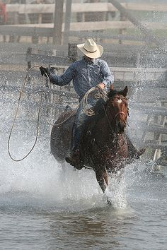 Cutting western quarter paint horse appaloosa equine tack cowboy cowgirl rodeo ranch show ponypleasure barrel racing pole bending saddle bronc gymkhana Cowboys And Angels, Hot Cowboys, Real Cowboys, Cowboy Horse, Cowboy Art, Cowboy And Cowgirl, Western Riding, Horse Riding, Western Art