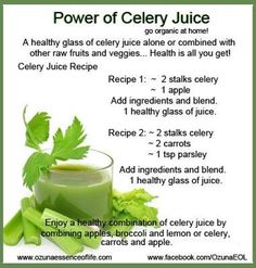 Celery Juice Recipes -- Celery juice is highly nutritious and one of the most hydrating foods we can put in our bodies. Because it is incredibly alkalizing, it equalizes the body's PH, which is vital for peak health. Make some juice today with celery in it!