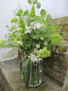 Bells of Ireland are a great, affordable spring flower for home designs!