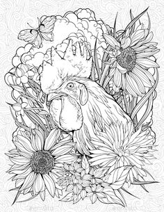 Buy Coloring Page With Rooster And Butterfly By NadiiaZ On GraphicRiver Floristic