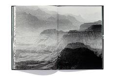 7439  by Renato D' Agostin