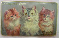 Vintage Droste Cat Tin Haarlem Holland Langues de Chats Hinged Stash Box Clean #Rileys