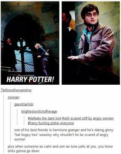 This whole thing is perfect! Especially the part where it points out how killer Ginny Weasly is.