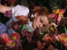 Dorothy asleep in the poppy field, The Wizard of Oz