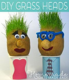 Cutest Grass Heads - Step by Step Instructions to Make Grass heads - a fun homemade craft idea for kids and those young at heart Garden Crafts For Kids, Kids Crafts, Easy Crafts, Garden Ideas, Best Kids Watches, Growing Grass, Chia Pet, Diy Backdrop, Diy And Crafts Sewing