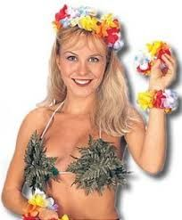 Fina a sexy Hawaiian costume here for any special occasion you are planning for.Halloween, a fun luau, or a tropical vacation! Hawaii Costume, Luau Costume, Costume Ideas, Ebay Swimwear, Hula Dancers, Hawaiian Luau, Sexy Halloween Costumes, Costume Accessories, Costumes For Women