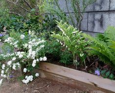 玄関前や門回りに花を植えて楽しみたい!という方におすすめなのが花壇。土のある場所を切り取って、レンガやブロック… Plants, Plant, Planets