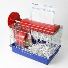Hamster shredder...rrr, no..that sounds wrong.
