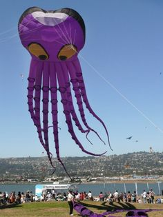 Inflatable Kites. Possibly the most popular type of large inflatable show kite today - the Octopus kite... T.P. (my-best-kite.com)
